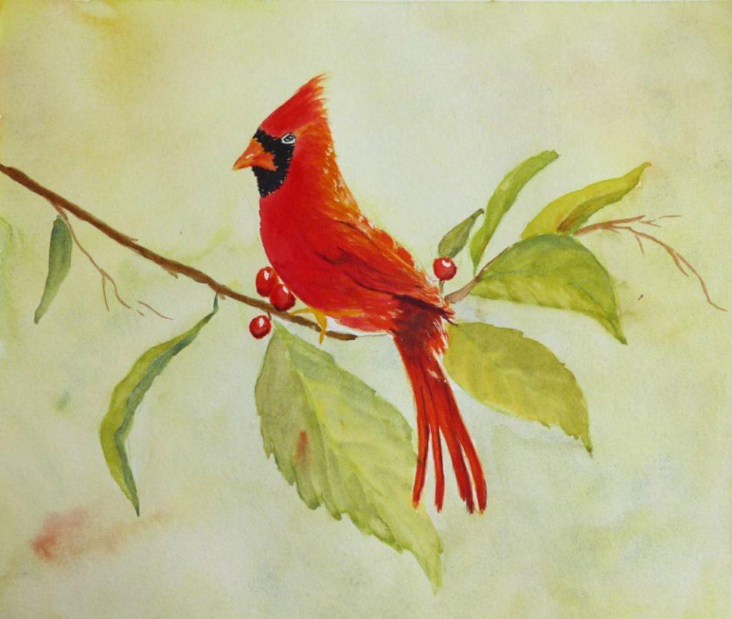 cardinal sur sa branche
