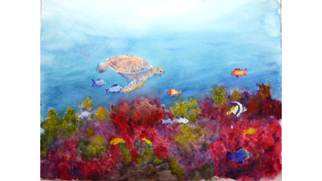 Aquarelle : Mandarine II , Tortue de mer