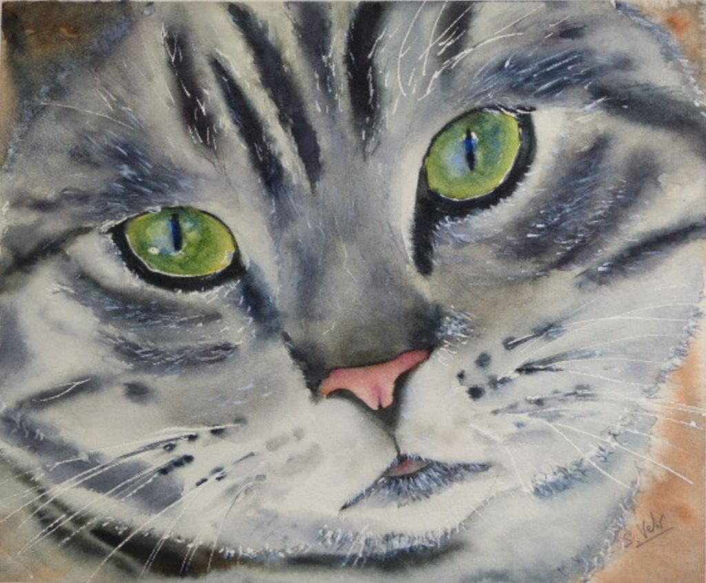 Aquarelle Petit chat