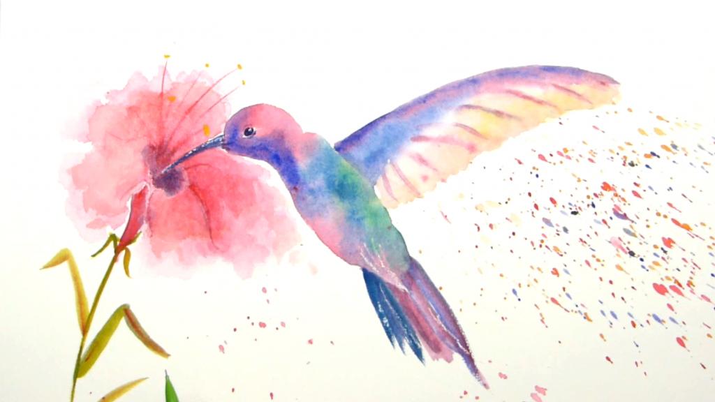 Aquarelle Colibri