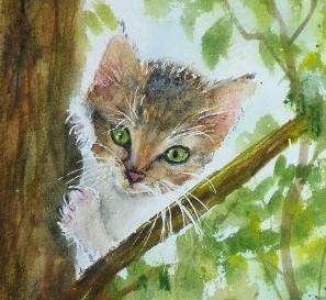 aquarelle chaton dans l'arbre detail
