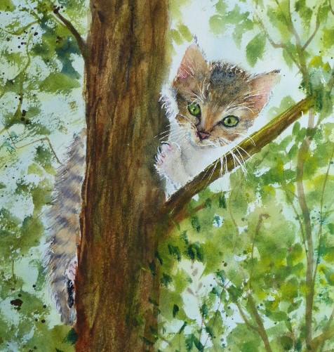 aquarelle chaton dans l'arbre