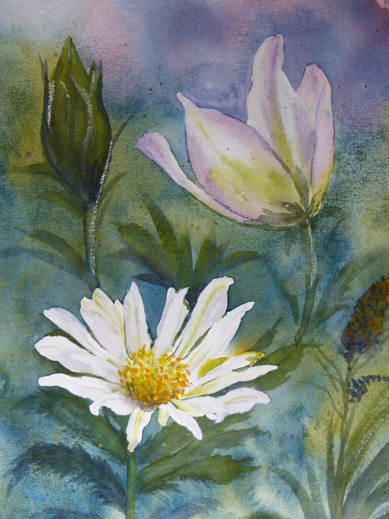 Aquarelle : Petites fleurs des champs