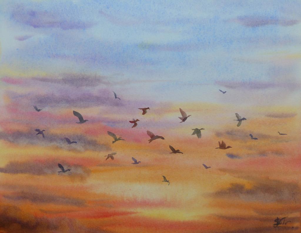 Aquarelle : Peindre un ciel et des oiseaux