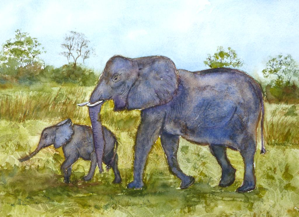 Aquarelle : Eléphants