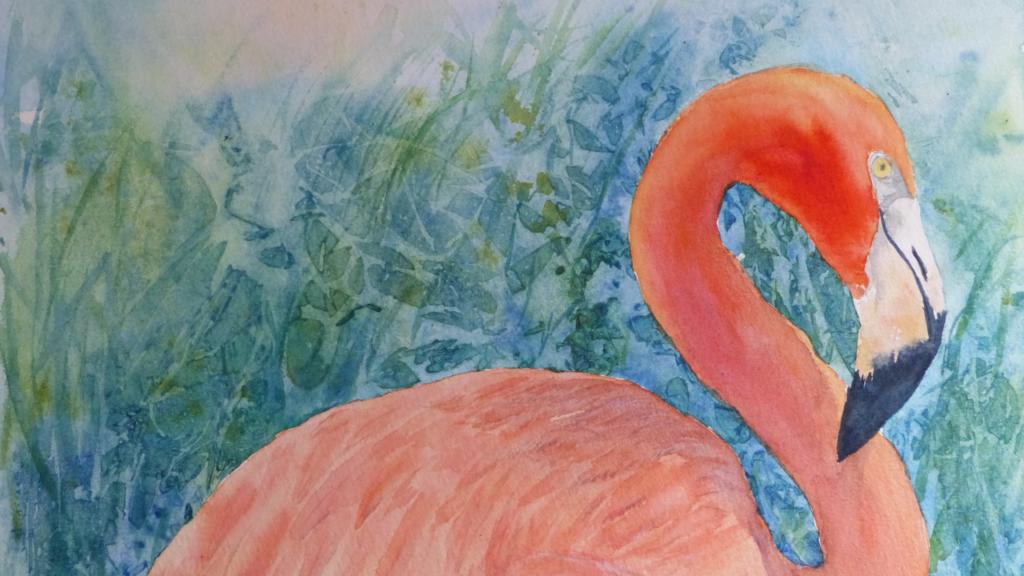 aquarelle : Flamant rose