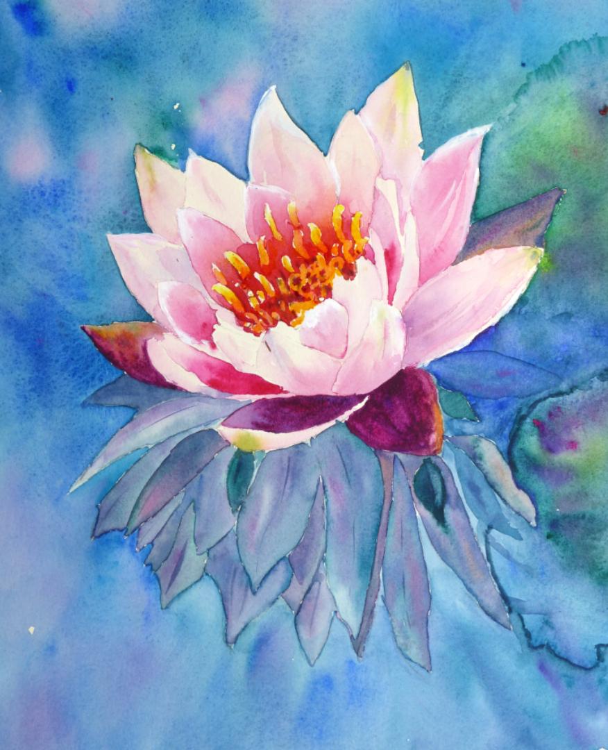Aquarelle Nénuphar rose